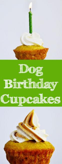 This dog cupcake recipe from our new book, The Healthy Hound Cookbook, also appears in Woman's Day magazine this month!: Dog Cupcake Recipes, Healthy Cupcakes Recipes, Dog Cupcakes Recipe, Cupcakes Recipes Healthy, Dog Birthday Cake Recipe, Healthy Cu