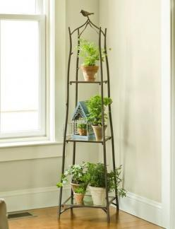 .This indoor Plant Stand, instead of the Antique bird cage from Antique store with two live birds in it that could talk? lol hmm?: Indoor Plant Stand Ideas, Branch Plant, Gift Indoor Plant, Houseplant, Garden, Indoor Plant Stands, Branches, Indoor Plants