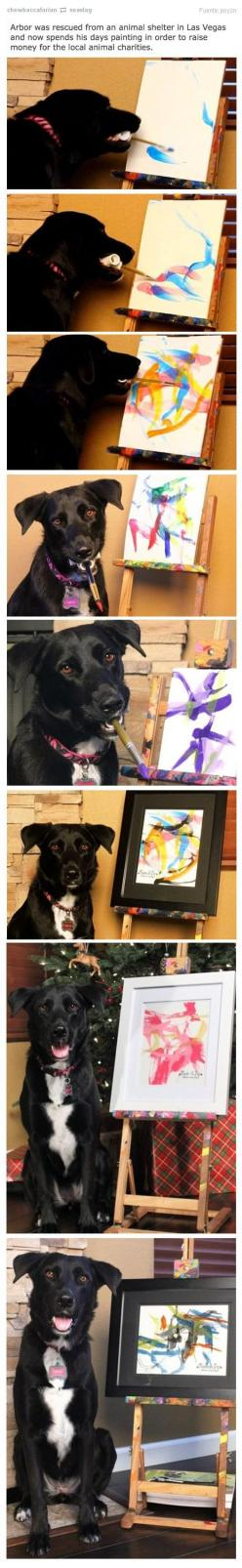 This is so awesome! I'd love one of these paintings :): Rescue Dogs, Paints Better, Awesome Dog, Pet, Dog Paints, Animal Shelter