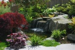 This would be lovely in the corner of our yard (where I've always wanted to put a pond): Contemporary Landscape, Ideas, Pond Idea, Water Features, Waterfall, Backyard, Landscapes, Alan Burke, Water Garden
