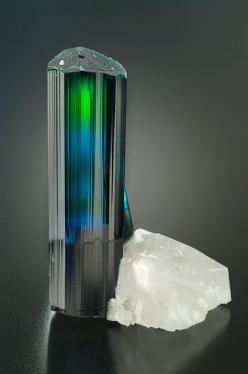 Tourmaline Specimen.  Wow, I would love to have a gemstone cut from that tourmaline.: Crystals Gems Minerals Rocks, Gems Minerals Crystals Rocks, Nature, Gem Stones, Crystals Gemstones, Gemstones Minerals Tourmalines, Photo, Rocks Gemstones Minerals