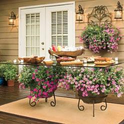 Trailing Petunias—Add color to your outdoor party with potted plants. There's no need for a patterned tablecloth here. Potted petunias add all the color you need under the glass-top dining table. | SouthernLiving.com: Container Garden, Garden Ideas, Outdo