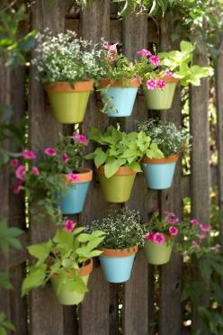 vertical gardening - grow up, not out: Garden Ideas, Flower Pot, Vertical Gardens, Backyard, Wall Garden, Flowerpot