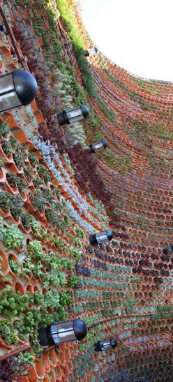 Vertical Gardening in Ibiza Spain. Wow!: Idea, Living Wall, Green Wall, Vertical Gardens, Hotel Ushüaia, Ibiza Spain