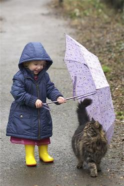 Walking in the rain with your kitty: Cats, Animals, Sweet, Friends, Children, Kids, Kitty, Rainy Days