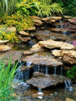 Water Features Adds Interest to Backyard Landscape: Backyard Ideas, Backyard Waterfall, Water Gardens, Backyard Landscape, Backyard Design, Water Features, Features Adds, Watergarden