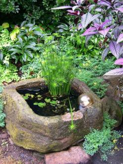 Water Garden in a Trough. Papyrus and water lily is surrounded by yellow-flowering corydalis and purple Persian shield in the upper-right corner.: Mini Pond, Water Gardens, Water Features, Outdoor, Garden Water, Garden Ponds, Waterfeature, Watergardens