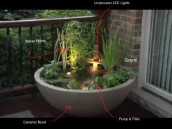 water gardens | Patio Water Garden, Small water feature: Container Water Gardens, Outdoor Yard Ideas, Gardens Backyards Scapes, Fountain, Landscapes Gardens, 536 Outdoor, Outdoor Gardens