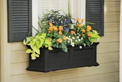 window boxes: Color, Flowerbox, Windows, Front Window, Container Gardening, Flower Boxes, Fairfield Windowbox, Window Boxes