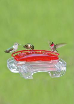 Window Hummingbird Feeder | Buy from Gardener's Supply: Window Hummingbird, Idea, Humming Birds, Bird Feeders, Windows, Hummingbirdfeeder, Garden, Hummingbirds