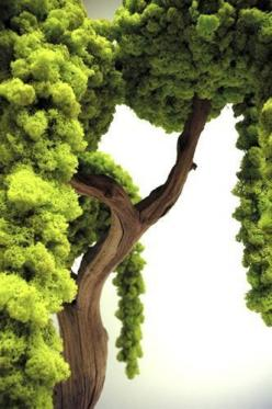 Wonder our Mother Earth provides us with sooo much. We need to appricate before she has no chose but to leave us to our own destruction..: Moss Twigs Birds Things, Beautiful Trees, Green Moss, Trees Trees, Moss Tree, Nature Trees