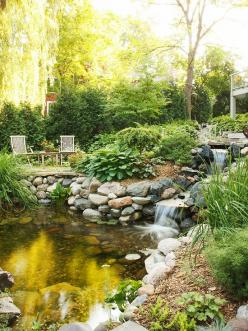 Wonderful Waterfall        A dense mix of evergreens and shade-loving plants creates a richly sculpted landscape around a backyard pond.: Pond Ideas, Garden Ideas, Water Gardens, Backyard Ponds, Water Features, Outdoor, Landscape