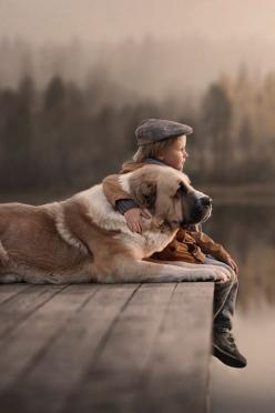 "You know you're alive.  That consciousness, that awareness, that ""act"" of knowing is not physical. It's non-physical. It's not made up of particles. It's beyond them.  It's independent. -Jon Rappoport: Animal Photography Dogs, Friendship It S, Autumn Phot"