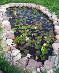 21 Garden Design Ideas, Small Ponds Turn Your Backyard Landscaping into Tranquil Retreats: Water Feature, Backyard Landscaping, Ponds Turn, Garden Design Ideas, Water Garden