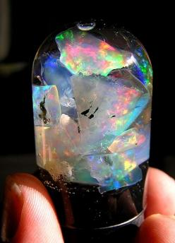 """precious"" opals in water to spark their fire more over time: Beautiful Gem, Opals The, Opal Baby, Rainbow Ridge, Ridge Trip, Black Opal, Beautiful Stuff, Beautiful Stones, Jelly Jars"