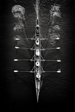 """"""" row row row your boat gently down the stream if you see a crocodile don't forget to SCREAM !"""": Photos, White Photography, Rowing, Black And White, Black White, Posts, Sports"""
