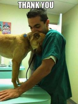 """""""Thank you..."""" This is the sweetest thing. Our rescued fur angels do this, such a blessing.: Picture, Animals, Sweet, Dogs, Pets, Puppy, Things, Vet Tech, Friend"""