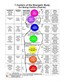 7 Centers of the Energetic Body. Our Energy Centres Chakra Chart - detailing essential oils, gemstones, immune system, musical notes, foods, herbs, colors, and physical body correspondences.: Food, Energy Healing, Essential Oils, Energetic Body, Chakra Ch