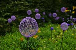 a cool idea  Love this.. chicken wire and spray paint makes what look like cool everlasting alliums in the yard!: Painted Chicken, Garden Ideas, Craft, Yard, Garden Art, Chicken Wire, Gardens
