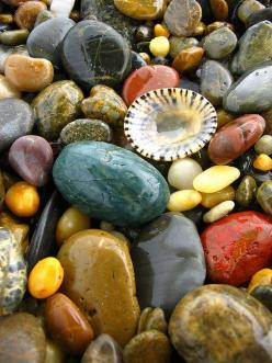 "A little boy came over to my house and asked me why I collect rocks.  I asked him..""why DON'T you?"": Sea Shells, Nature, Color, Beautiful, Seashells, Beach, Stones, Pretty Rocks"