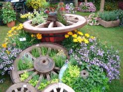 A lovely herb arrangement with cartwheels. I love anything with wheels, such a lovely arrangement.: Wagon Wheels, Garden Ideas, Yard, Gardening, Herbs Garden, Gardens, Wagonwheels, Flower