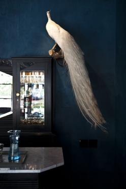 A Taxidermy White Peacock at the Hotel St. Cecilia in Austin, Texas: Decor, Interior, Inspiration, Austin Texas, Bathroom, Bedroom, White Peacock