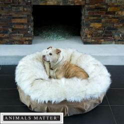 Animals Matter® Shag Puff™: Animals Pets, Pet S, Dog Thingsss, Addy Puppy, Baby, Pet Accessories