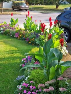 Aren't you inspired by this! How pretty this would be framing a driveway. Beautiful. (pinned: 2/12/2015): Garden Ideas, Front Yard, Gardens, Colorful Border, Flowers Garden, Landscaping Idea