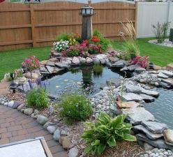 backyard patios    variety of shapes and colors outdoor ideas: Pond Ideas, Backyard Ponds, Water Features, Outdoor, Fish Ponds, Water Garden