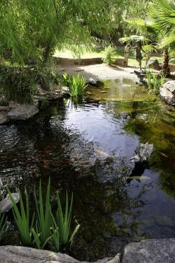 Beautiful, healthy, and blue water can be achieved with Organic Pond dyes and products!  www.organicpond.com: Backyard Ponds, Outdoor Pond, Natural Pond, Koi Pond Ideas Landscaping, Goldfish Pond, Koi Ponds Ideas
