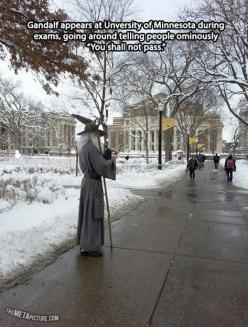 Brace yourselves for finals week.. - Imgur: Stuff, Finals Week, Funny, College, Funnies, Middle Earth, Gandalf, Pass