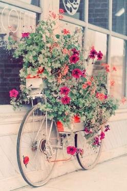 by alice b. gardens: Ideas, Bicycles, Outdoor, Flower Bike, Gardens, Old Bikes, Things, Flowers