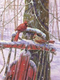 cardinals- such a pretty watercolor, i wonder if this started out as a photo the artist shot, or if they just did made up the subject from their imagination?: Red Sled, Winter Scene, Redbird, Winter Wonderland, Christmas, Birds, Cardinals