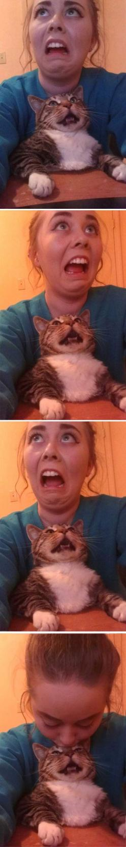 Cat: Selfie, Kitty Cat, Funny Cats, Kind, Animal, Cat Lady