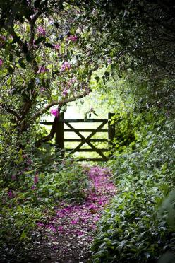 Down the path, over the gate and out into the BIG,BOLD and WONDERFUL WORLD....go on, you know you want to go.....Cindy.: Secret Garden, Garden Gates, Country Garden, Country Living, Chartwell Gardens, Beautiful