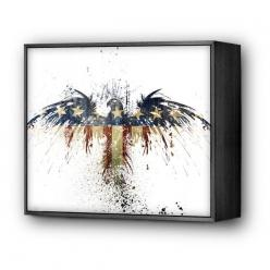 eagles...: Art Purchased, Sweet Land