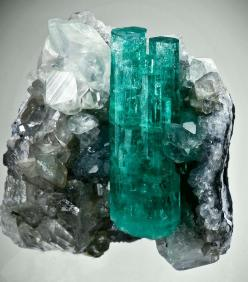 emerald cluster on calcite - coscuez mine, colombia: Emeralds, Calcite Gemstones, Crystals Gems Minerals Stones, Crystals Minerals, Coscuez Mine, Gemstones Minerals Crystals, Stones Gems Minerals Crystals, Crystals Fossils Gemstones, Crystals Stones Miner