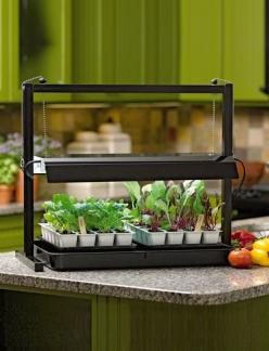 Everything you need to get started, including planting mix — just add seeds!: Garden Ideas, Garden Hints, Compact Tabletop, Tabletop Jump, Tabletop Sunlite, Grow Lights