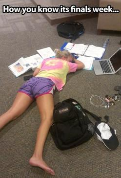 Forget finals week, this is how I feel trying to study for Anatomy while still doing my normal coursework on time, working, interning, and farm duty sprinkled in!: Nursing School, College Life, Finals Week, Truth, Funny, Funnies, Finalsweek, Collegelife