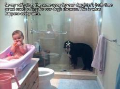 Funny Pictures Of The Day – 91 Pics: Giggle, Dogs, Bathtime, Funny Stuff, Baby, Funny Animal, So Funny, Bath Time