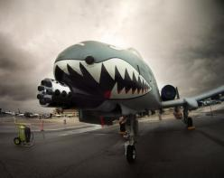 Go ahead make my day. The Clint Eastwood of the aircraft world. A-10 Warthog: Nose Art, Airplanes Jets Helicopters, Air Force, Air Power, Aircraft Nose, Airplane Nose, A 10 Warthog, A 10 Fairchild, Photo