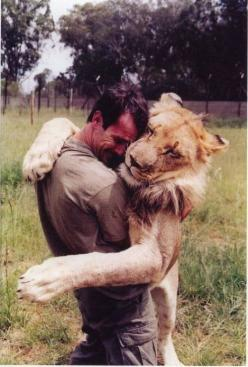 Great big lion hug :): Big Cat, Big Hug, Animals, Friends, Pet, Things, Man, Lion Hug, Kevin Richardson