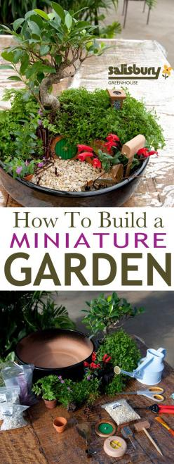 How To Build a #MiniatureGarden with Salisbury Greenhouse. #FairyGardening and a few other nice tutorials: Miniture Garden, Fairy House, Mini Garden, Miniature Fairy Garden, Hobbit House, Mini Fairy Garden