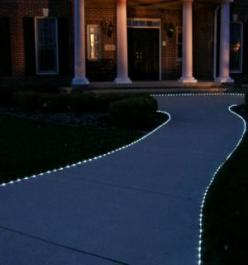 I'm going to do this on my front walkway with cool white solar rope lights. I found them at Home Depot and they are cheap!: Lighting, Landscaping, Solar Rope, Backyard, Ropes, 50 Led, Rope Lights Garden, Led Solar