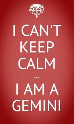.I am not a Gemini but all my encounters with Gemini have ended in disaster: Can T, True Gemini, Funny Gemini Quotes, Bitchwhere Gemini, Keep Calm, Case, Calm Externally, 35 Gemini