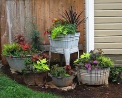 I like these wash tubs as planters. What a neat garden display.: Garden Container, Container Gardens, Garden Ideas, Yard, Wash Tubs, Gardening Ideas, Washtub, Container Gardening