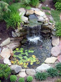 I really want a backyard pond that has a little waterfall with koi fish and turtles.: Pond Ideas, Backyard Ponds, Water Features, Waterfeature, Water Garden, Watergarden