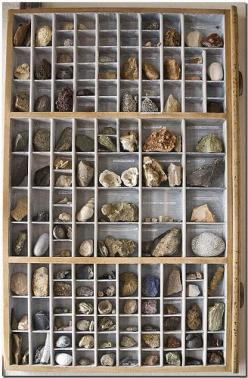 I would love to eventually fill up a type case such as this with specimens of a lot of pretty mineral and gemstone specimens.  (If anyone knows of good places to obtain either of these, please let me know!)     :): Rock Display, Ideas, Display Idea, Miner