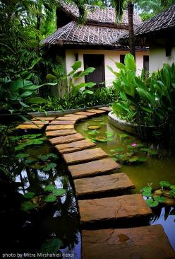 It reminds me of Bali but I'm sure this isn't Balinese design (maybe Polynesian?). I'd make sure there are a lot of small fish in the pond tho, just to make sure no mosquito larvae survive.: Ideas, Dream, Outdoor, Gardens, Water Garden
