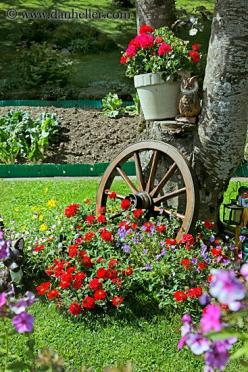 Jazz up the flower bed surrounding a tree w/ rustic accessories (wagon wheel, wheelbarrow, wooden chair), hanging potted plants on the trunk & strategically place solar powered garden lamps on stakes along the flower bed perimeter.: Wagon Wheels, Idea